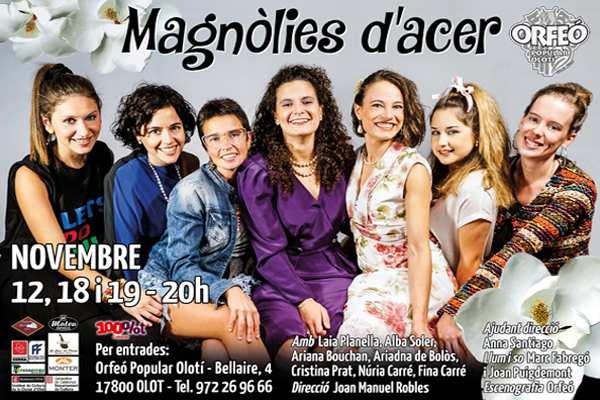 magnolies acer
